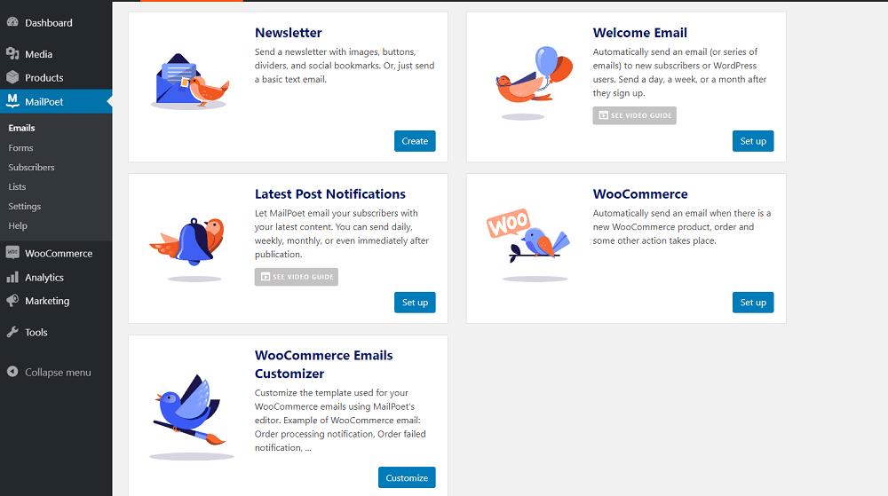 MailPoet Email Types